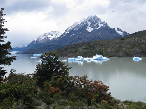 Chile Iceberg on lake in Torres del Paine
